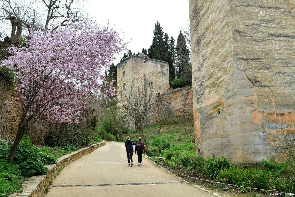 Alhambra_06