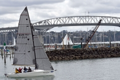 auckland_harbour_bridge