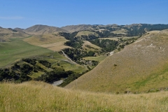 cape_kidnappers_14