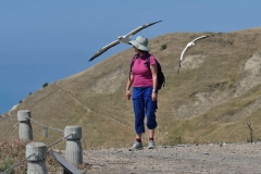 cape_kidnappers_17