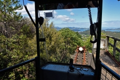 driving_creek_railway_3