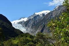 franz_josef_glacier_11