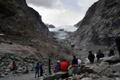 franz_josef_glacier_15