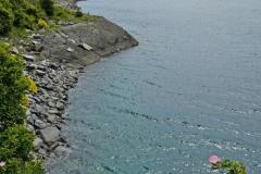 lake_wanaka_05