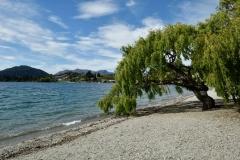 lake_wanaka_07