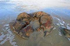 moeraki_boulders_05