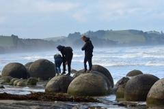 moeraki_boulders_11