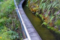 07_pupu_hydro_walkway