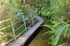 08_pupu_hydro_walkway