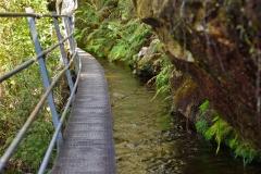 10_pupu_hydro_walkway