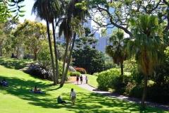 royel_botanic_garden_04