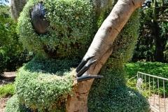 royel_botanic_garden_07