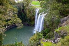 whangarei_falls_1