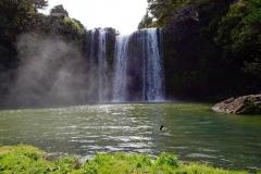 whangarei_falls_6