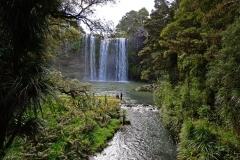 whangarei_falls_8
